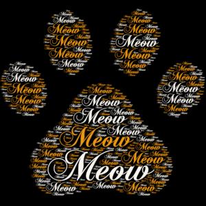 Kitty Katze Pfote Wort Kunst - Meow