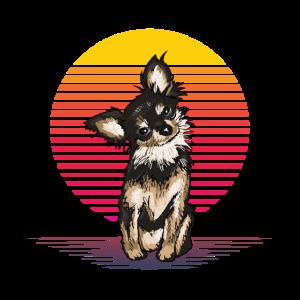 Chihuahua Vapor