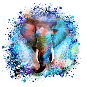 elefant,bunt,malerei,bunt,aquarell,graffiti