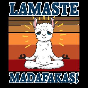 Lamaste Madafakas Lustiges Lama beim meditieren