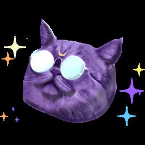 Kosmos Katze Mond Katze Luna Cat