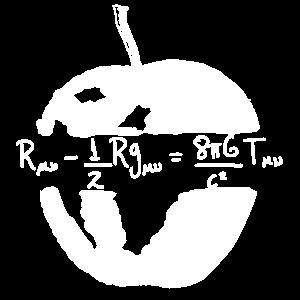 Gleichung der allgemeinen Relativitätsgleichheit