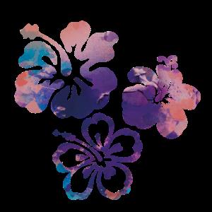 Blume,Lotus, kolibri,Malerei,blau,Blumen,lila