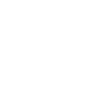 Borz industries White