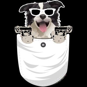 Pocket Dog