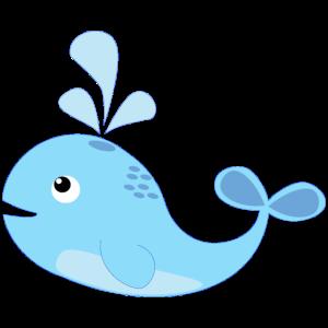 Wal, Blauwal