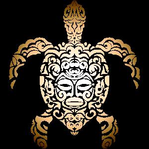 Schildkröte Musik Ozean