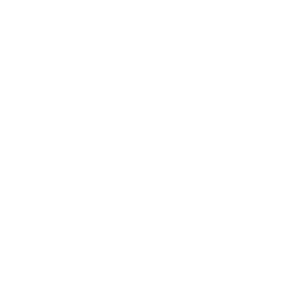 sailing plane symbol compass