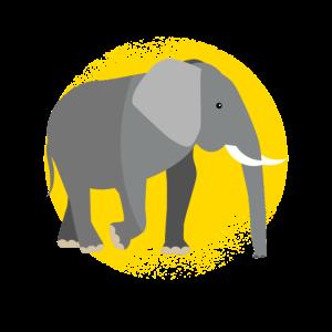Elefanten Elefant Afrika Wildnis Safari Wild Tier