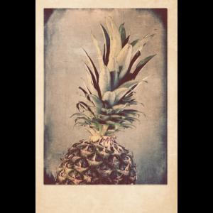 Vintage Ananas