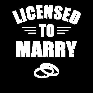 Standesbeamter Hochzeit Eheschließung Beamter