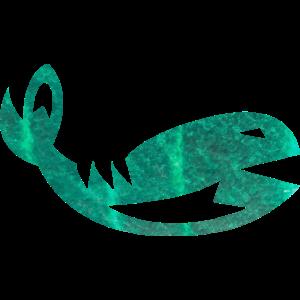 Wal Ozean Meer Tropisch