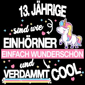 Geburtstag 13 Geburtstag Einhorn Spruch Party