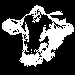 Kuh Kopf