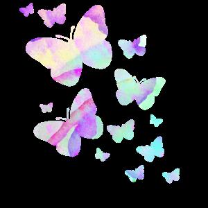 Schmetterlinge Schmetterling bunt Farben Natur