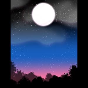 Nacht mit Vollmond