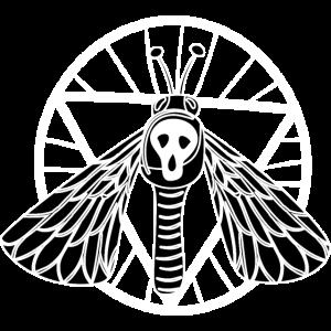 Pentagramm Mondphasen Witchcraft Occult Wicca