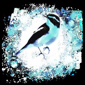 Vogel, Zeichnung, Malerei, meise,hellblau