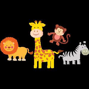 Safari - Tiere
