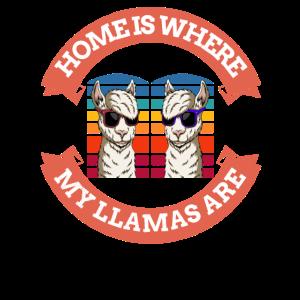 Home is where my Llamas are - Lama Alpaka Guanaco