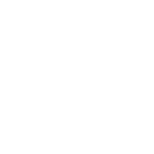 Rentner white
