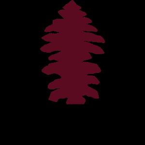 Baum Nadelbaum Tanne zweifarbig