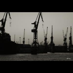 Hamburg Hafenkrane