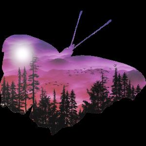 Schmetterlinge - Tier - niedlich - Tiere - Tier