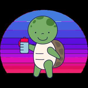 Baby Schildkröte Sonnenuntergang