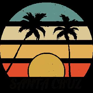 Vintage Retro Santa Cruz