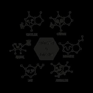 Chemistry is awesome Geschenk Wissenschaft