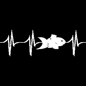 love fish friends nature heartbeat