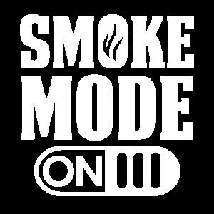 BBQ Smoker Smoke Mode On