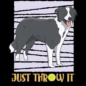 Border Collie Hundebesitzer Hundeschule Geschenk