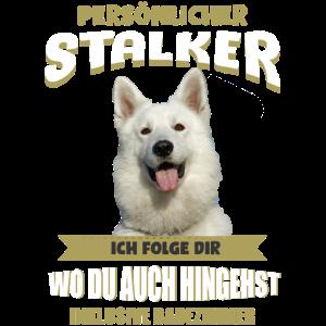 Weisser Schäferhund - Weißer Schäferhund