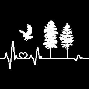 Herzschlag Adler Natur Wildnis Wald Baum Bäume EKG