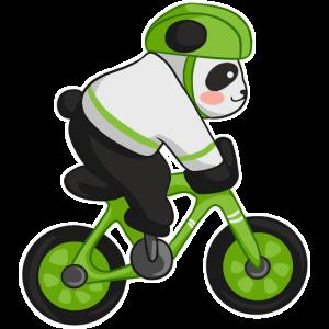 Panda Fahrrad Fahrradfahren