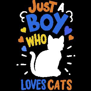 Katzen Katzenliebhaber
