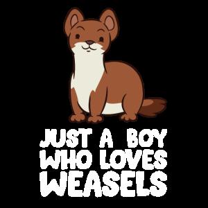 Nur ein Junge, der Wiesel liebt