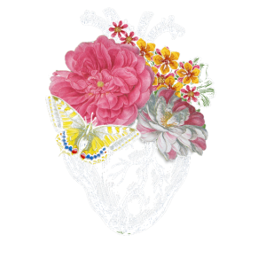 Anatomical Heart And Flowers Show Your Love