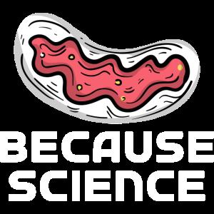 Wissenschaft Leben