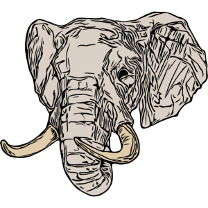 Elefant Elefantenmotiv Tier Motiv Afrika