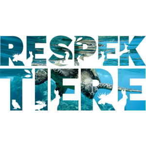 Respekt Tiere Ozean Schildkröte Meer Tierschutz