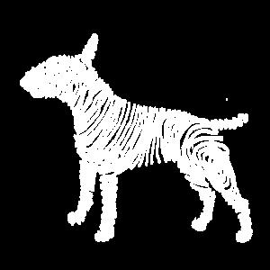 Streifenbulliweiß