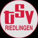 TSVLogorundintervertiert
