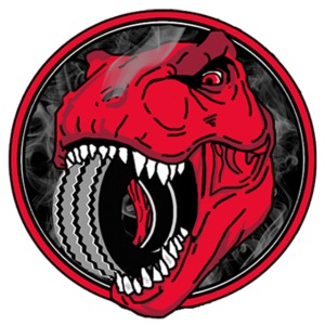 Rex Tyres Logo