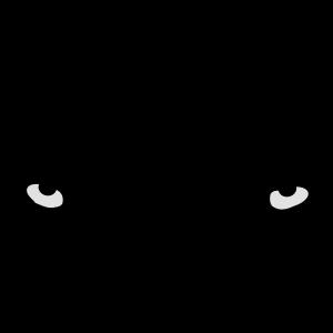 Huskyeyes