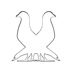 2pigeonswhite png