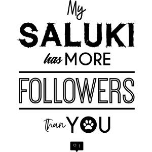My Saluki Has...