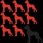 Significant neuen Doggen